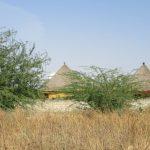 Afrika Urlaub naturnah im LIM-Camp